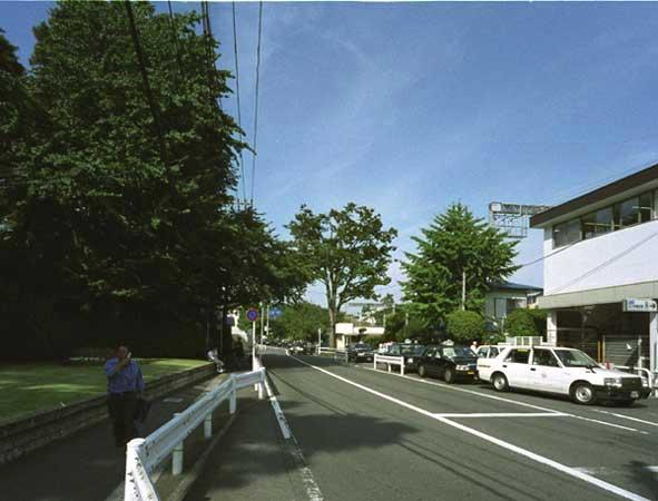 o-keyaki2005-02