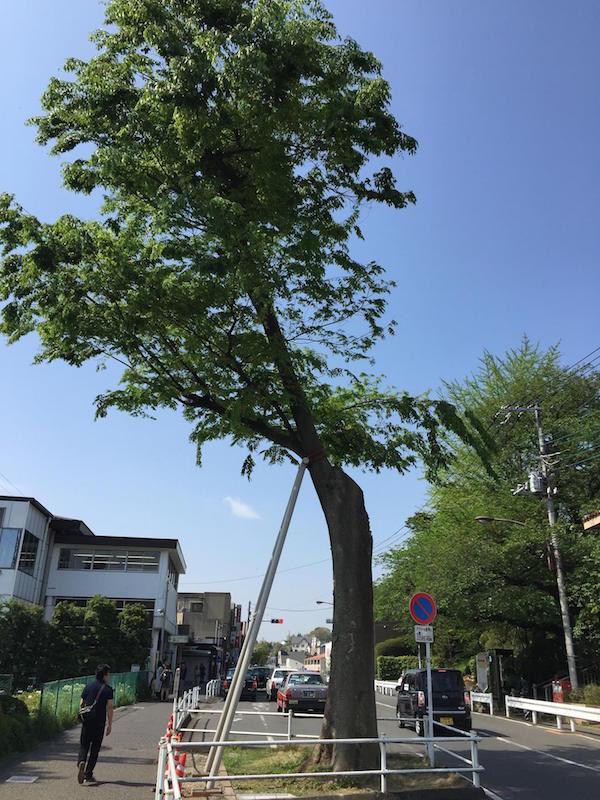 201504ekimaeoukeyaki03