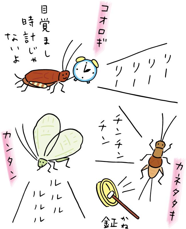 この町おさんぽコラム 41号 秋の鳴く虫